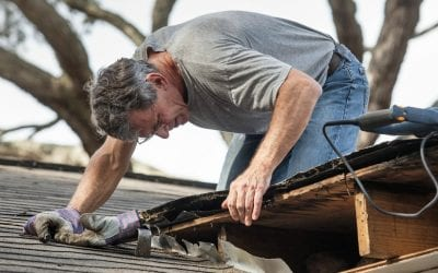 Your Guide to Roof Repair: A DIY Job or Time to Call in the Pros?