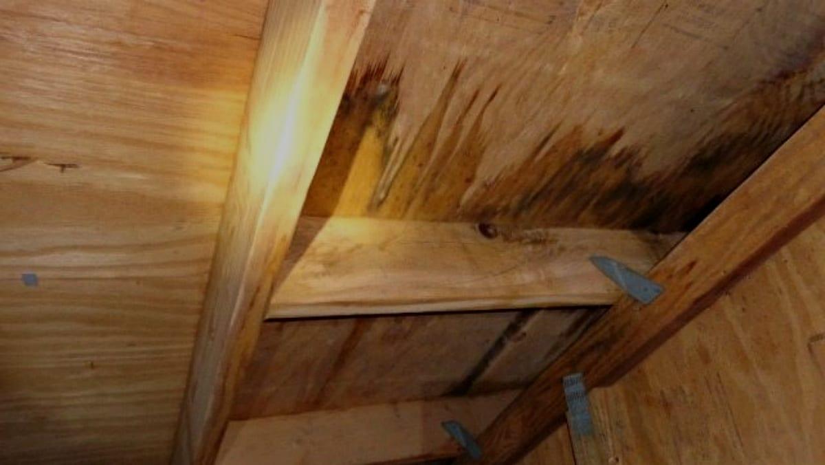 need roof repair