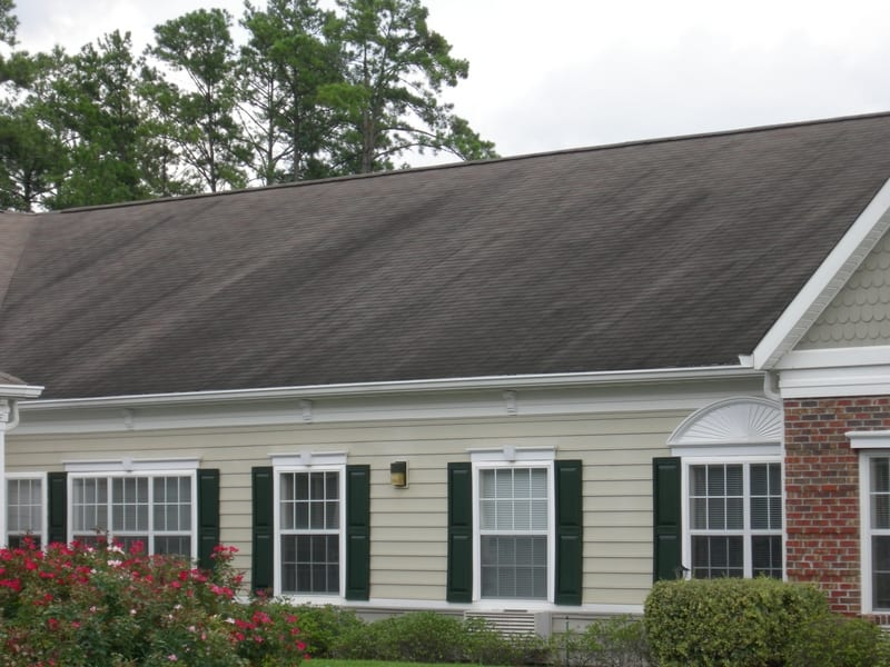 Algae Staining On Shingled Roof Surfaces Sonshine