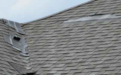 How to Assess Your Own Roof Damage Before Calling the Pros