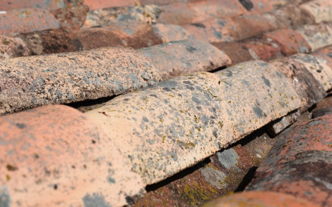 How Often Should You Get Your Roof Inspected?