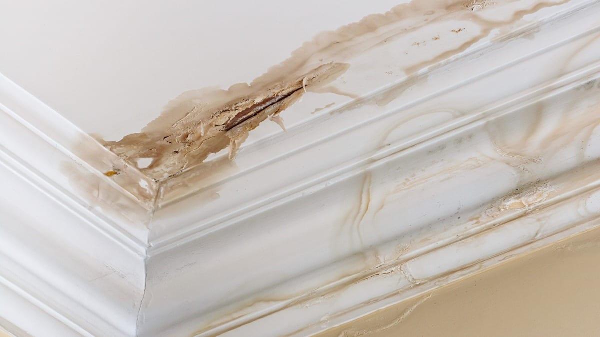 roof leak, reasons for roof leaks, roof repair